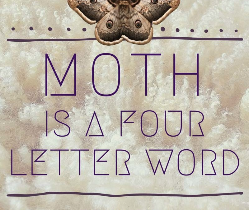Moth is a Four Letter Word. Here is my favorite mothball alternative.